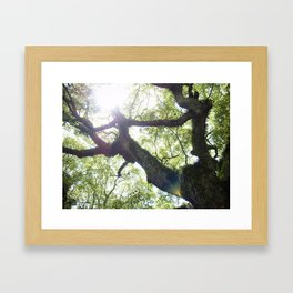 Earth beat Framed Art Print