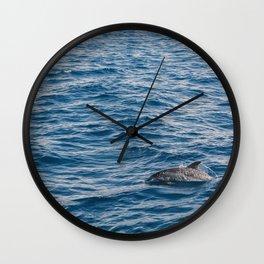 Dolphin, Portugal, 2017 Wall Clock