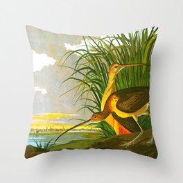 Long-billed Curlew Bird Throw Pillow