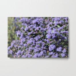 Purple Sea Metal Print