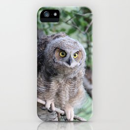 Greathorned Owl on branch iPhone Case