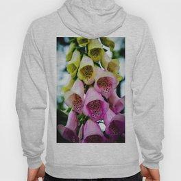 Bellflower Hoody