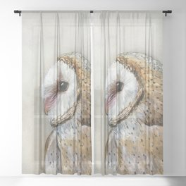 Barn Owl Watercolor, Birds Of Prey Wild Animals Owls Sheer Curtain