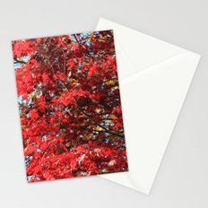 Fall maple trees of red leaves, in blue sky.  nature landscape photography. Stationery Cards