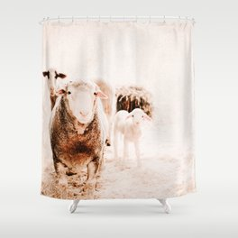 Milly's family portrait Shower Curtain