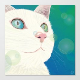Odd-eyed White Cat Canvas Print
