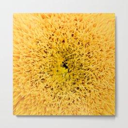 Teddy Bear Sunflower Petals Metal Print