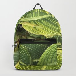 Gentle Whispers Of Leaves Fine Art Photo Backpack