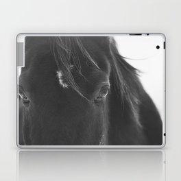 Close Up Black Horse Photograph Laptop & iPad Skin
