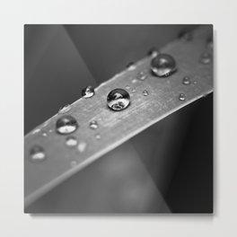 Simple Drops 1 Metal Print