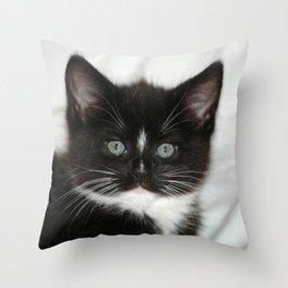 Little Black and White Kitten Throw Pillow