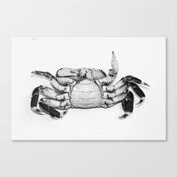crab Canvas Prints featuring Crab by Vanitylife