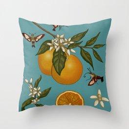 Oranges (Citrus Sinensis) Throw Pillow