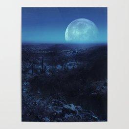 Desert Dream Poster