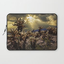 Cholla Cactus Garden bathed in Sunlight in Joshua Tree National Park California Laptop Sleeve