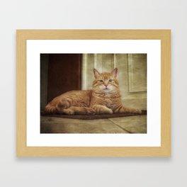 Cattitude Is Everything. Framed Art Print