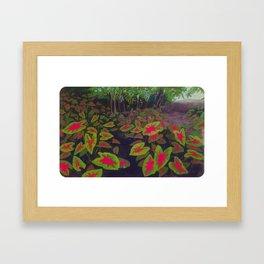 Caladiums Framed Art Print