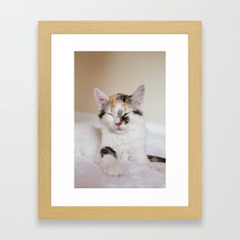 Sleepy cat (II) Framed Art Print