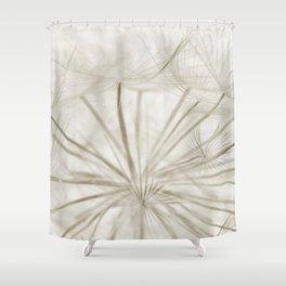 Dandelion Neutral Closeup Shower Curtain