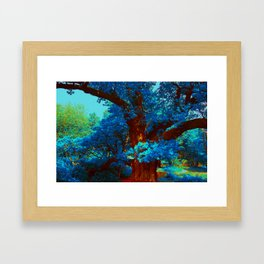 birnam wood in technicolor Framed Art Print