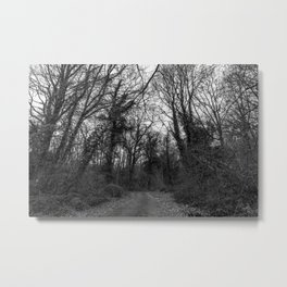 Monochromatic forest path Metal Print