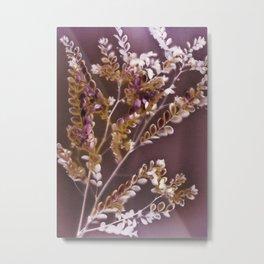 Lumen S4 VE1 Metal Print