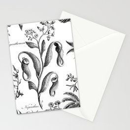Antique Nepenthes and Drosera Print from 1757 Stationery Cards