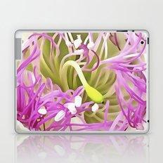 Caper Flower Blossom Laptop & iPad Skin