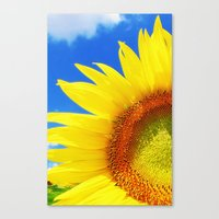 sunflower Canvas Prints featuring SUNFLOWER by Ylenia Pizzetti
