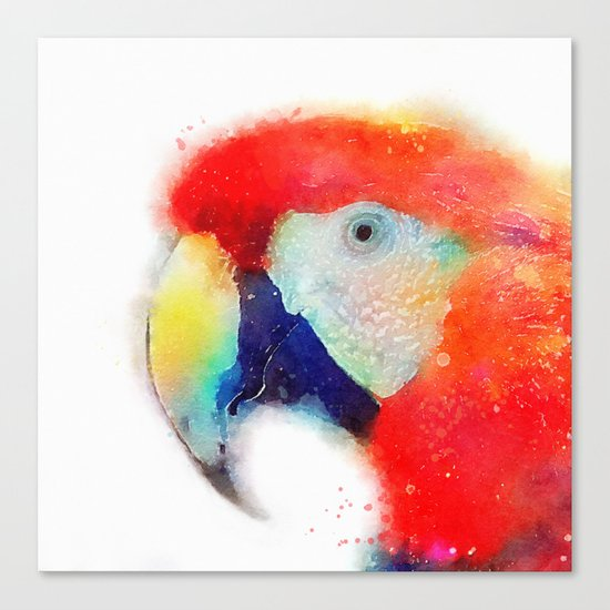 The Articulate - Parrot Canvas Print