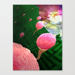 feed your brain Canvas Print