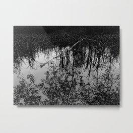 Monochrome Marshland Metal Print