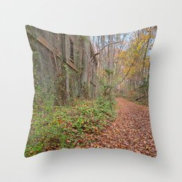 Fall Power House Trail Throw Pillow