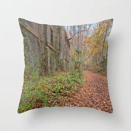 Fall Power House Trail Throw Pillow