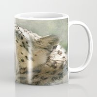 sublime Mugs featuring Sublime indifference... by Pauline Fowler ( Polly470 )