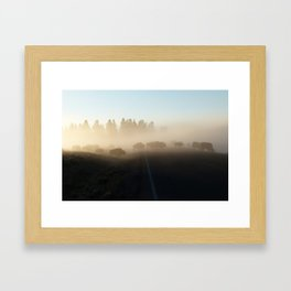 Yellowstone Bison in Early Morning Fog Framed Art Print