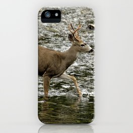 Young Buck Crossing The River iPhone Case