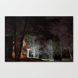 In the Backyard Canvas Print
