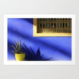 Moroccan Gardens Art Print