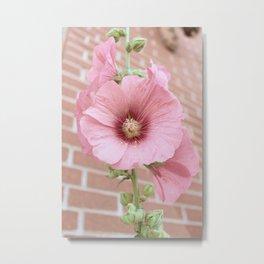 Beautiful Pink Vintage Flower Metal Print