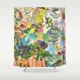 End of Propagation Shower Curtain
