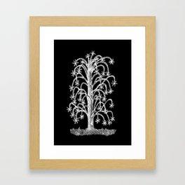 Hanging Flower Tree Negative Framed Art Print