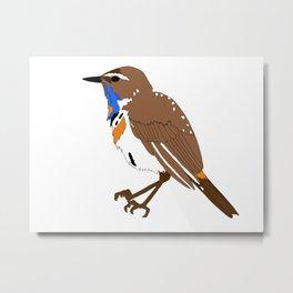 Blue Throat Bird Metal Print