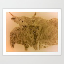 Highland Cow and Calf  Art Print
