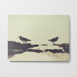 Two Little Birds Metal Print