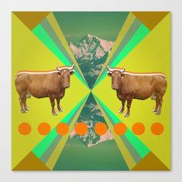 cow's reflexion Canvas Print