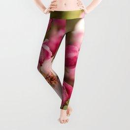 Pink apple buds Leggings