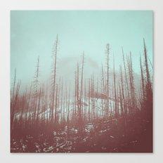 Burnt Winter Canvas Print