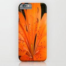 ORANGE BLOOM Slim Case iPhone 6s
