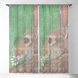The Treasure Sheer Curtain